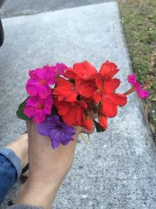 Cristie Flower